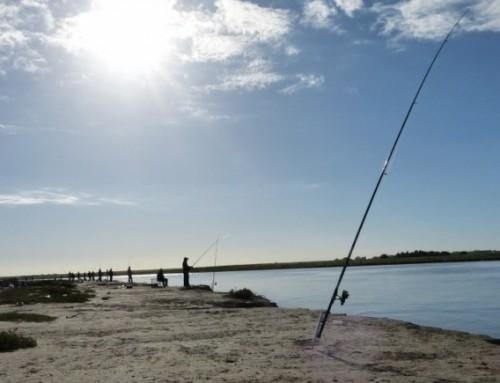 Torneo de pesca en Montevera. Comisión de Deportes.